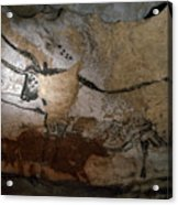 Paleolithic Art Of Bulls On Calcite Acrylic Print by Keenpress