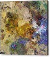 Paleology Weave  Id 16097-223127-16640 Acrylic Print