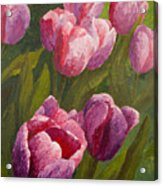 Palette Tulips Acrylic Print