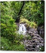Palikes Stream 6 Acrylic Print