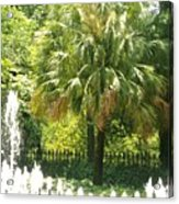 Palm And Fountain Acrylic Print