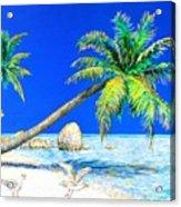 Palm Beach Number Five Acrylic Print
