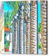 Palm Columns Acrylic Print