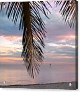 Palm Courtain II Acrylic Print