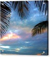 Palm Curtains Acrylic Print