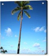 Palm Day Acrylic Print