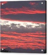 Palm Desert Sunset Acrylic Print