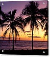Palm Horizons Acrylic Print