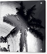 Palm In Grey Acrylic Print