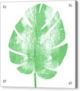 Palm Leaf- Art By Linda Woods Acrylic Print
