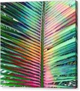 Palm Leaf Art Acrylic Print