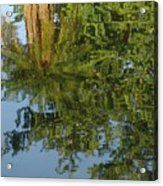 Palm Mirror Acrylic Print