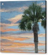 Palm Morning Acrylic Print