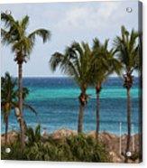 Palm On The Beach Acrylic Print