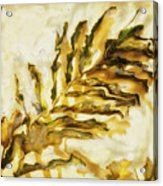Palm on Wall Acrylic Print