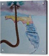 Palm Over Florida Acrylic Print