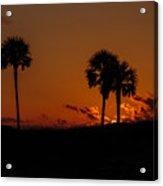 Palm Paradise Acrylic Print
