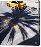 Palm Porsche Acrylic Print