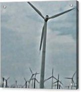 Palm Springs Windmills Acrylic Print