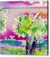 Palm Sunrise Acrylic Print