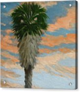 Palm Sunrise Acrylic Print