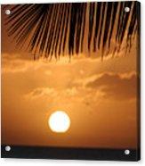 Palm Sunset Hawaii Acrylic Print