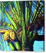 Palm Tree At Sunset Acrylic Print