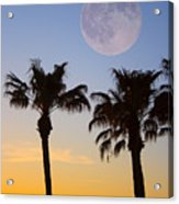 Palm Tree Full Moon Sunset Acrylic Print
