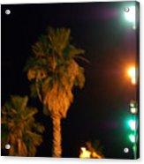 Palm Tree Glow Acrylic Print