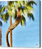 Palm Tree Needs A Chiropractor Painterly I Acrylic Print