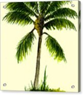 Palm Tree Number 1 Acrylic Print