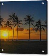 Palm Tree Paradise Acrylic Print