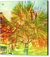 Palm Tree Portrait Acrylic Print