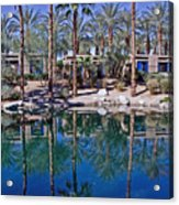 Palm Tree Reflections Acrylic Print
