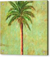 Palm Tree Studio 3 Acrylic Print