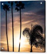 Palm Tree Sunset Silhouette Acrylic Print