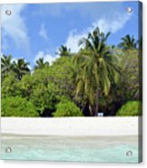 Palm Trees And Exotic Vegetation On The Beach Of An Island In Maldives Acrylic Print