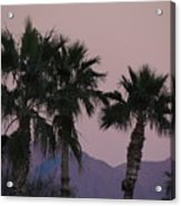 Palm Trees And Mountains At Sunset #1 Acrylic Print