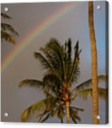 Palm Trees And Rainbow Acrylic Print