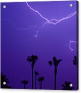 Palm Trees And Spider Lightning Striking Acrylic Print