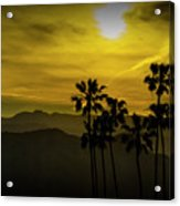 Palm Trees At Sunset With Mountains In California Acrylic Print