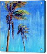 Palmas Viento Acrylic Print