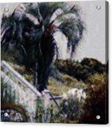 Palmetto Beach Acrylic Print