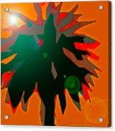Palms 5 Acrylic Print