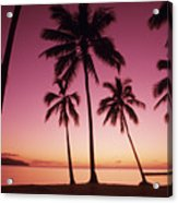 Palms Against Pink Sunset Acrylic Print