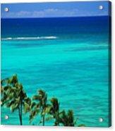Palms And Ocean Acrylic Print
