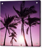 Palms And Pink Sunset Acrylic Print