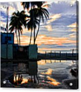 Palms And Sunshine Acrylic Print