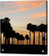 Palms At Sunset Acrylic Print