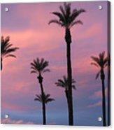 Palms At Sunset Acrylic Print